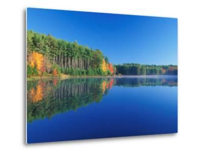 White Pines and Hardwoods, Meadow Lake, New Hampshire, USA-Jerry & Marcy Monkman-Metal Print