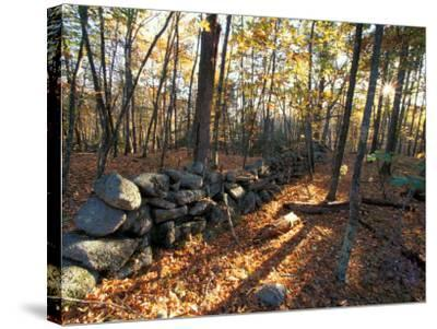 Stone Wall, Nature Conservancy Land Along Crommett Creek, New Hampshire, USA-Jerry & Marcy Monkman-Stretched Canvas Print