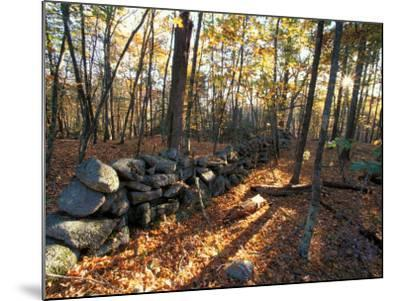Stone Wall, Nature Conservancy Land Along Crommett Creek, New Hampshire, USA-Jerry & Marcy Monkman-Mounted Photographic Print