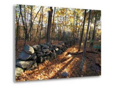 Stone Wall, Nature Conservancy Land Along Crommett Creek, New Hampshire, USA-Jerry & Marcy Monkman-Metal Print