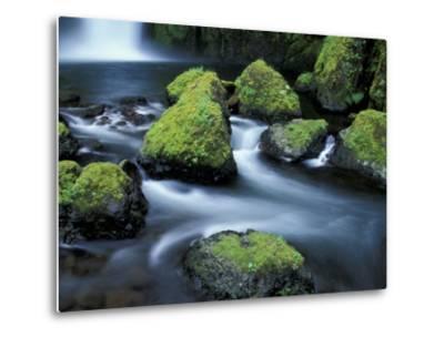 Water Below Wahclella Falls, Columbia River Gorge National Scenic Area, Oregon, USA-Adam Jones-Metal Print