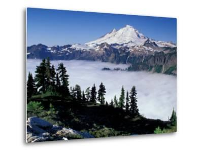 View of Mount Baker from Artist's Point, Snoqualmie National Forest, Washington, USA-William Sutton-Metal Print