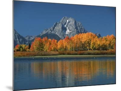 Mt. Moren, Oxbow Bend, Grand Tetons National Park, Wyoming, USA-Dee Ann Pederson-Mounted Photographic Print