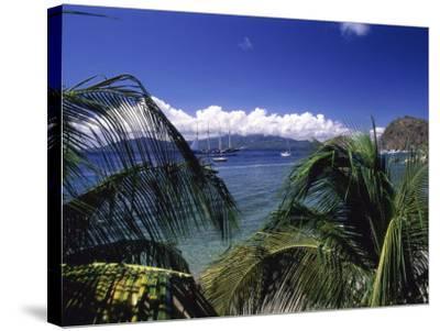 Iles Des Saintes, Guadeloupe--Stretched Canvas Print