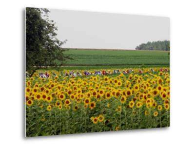The Pack Rides Past a Sunflower Field During the Sixth Stage of the Tour De France--Metal Print