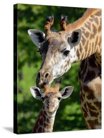 Bridgit and Her 3-Week Old Son Mac--Stretched Canvas Print