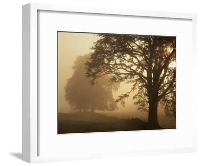 Autumn Morning, Near Dryman, Stirling, Scotland--Framed Premium Photographic Print