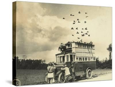 WWI: Soldiers Setting Free Some Carrier Pigeons, Northern France--Stretched Canvas Print