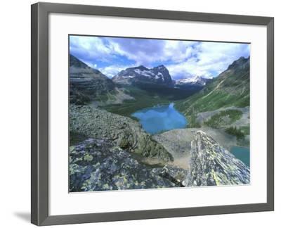 Lake O'Hara, Yoho National Park, British Columbia, Canada-Rob Tilley-Framed Photographic Print