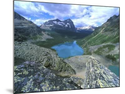 Lake O'Hara, Yoho National Park, British Columbia, Canada-Rob Tilley-Mounted Photographic Print