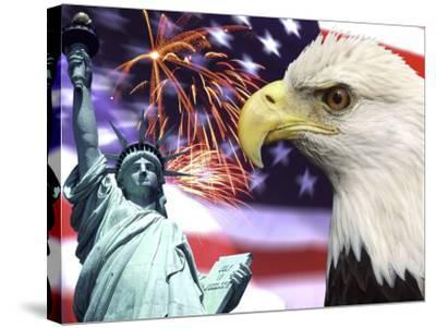 Eagle, Fireworks, Statue of Liberty-Bill Bachmann-Stretched Canvas Print