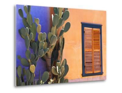 Southwestern Cactus and Window, Tucson, Arizona, USA-Tom Haseltine-Metal Print