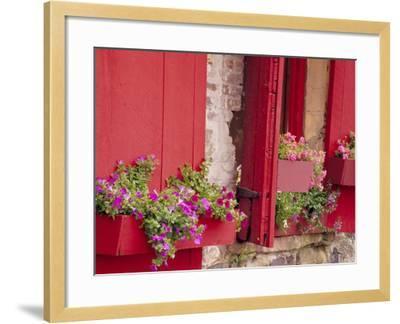Flower Boxes on Storefronts, Savannah, Georgia, USA-Julie Eggers-Framed Photographic Print