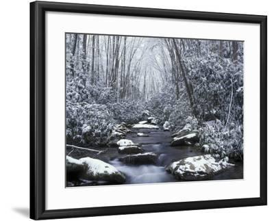 Cosby Creek in Winter, Great Smoky Mountains National Park, Tennessee, USA-Adam Jones-Framed Photographic Print
