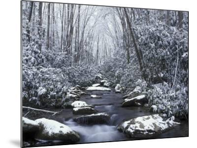 Cosby Creek in Winter, Great Smoky Mountains National Park, Tennessee, USA-Adam Jones-Mounted Photographic Print