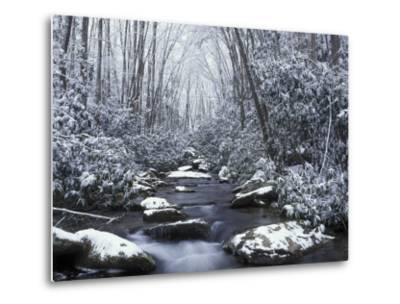 Cosby Creek in Winter, Great Smoky Mountains National Park, Tennessee, USA-Adam Jones-Metal Print