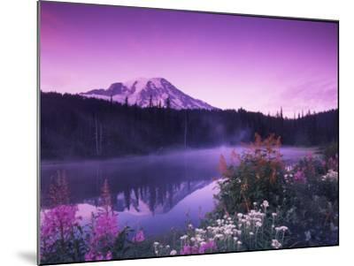 Reflection Lake with Summer Alpine Wildflowers, Mt. Rainier National Park, Washington, USA-Stuart Westmoreland-Mounted Photographic Print