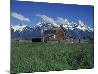 Jackson Hole Homestead and Grand Teton Range, Grand Teton National Park, Wyoming, USA-Jamie & Judy Wild-Mounted Photographic Print