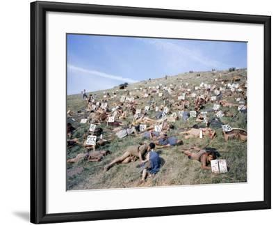 """Extras Playing Dead People Hold Numbered Cards Between Takes During Filming of """"Spartacus""""-J^ R^ Eyerman-Framed Photographic Print"""