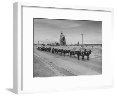 Trademark Twenty Mule Team of the US Borax Co. Pulling Wagon Loaded with Borax-Ralph Crane-Framed Photographic Print
