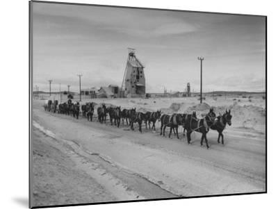 Trademark Twenty Mule Team of the US Borax Co. Pulling Wagon Loaded with Borax-Ralph Crane-Mounted Photographic Print