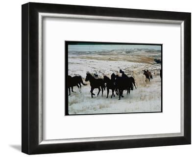Wild Mustang Horses Running Across Field in Wyoming and Montana-Bill Eppridge-Framed Photographic Print