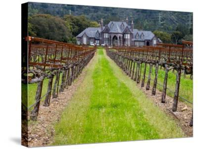 Ledson Winery, Sonoma Valley, California, USA-Julie Eggers-Stretched Canvas Print