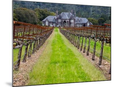 Ledson Winery, Sonoma Valley, California, USA-Julie Eggers-Mounted Photographic Print