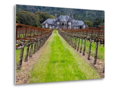 Ledson Winery, Sonoma Valley, California, USA-Julie Eggers-Metal Print