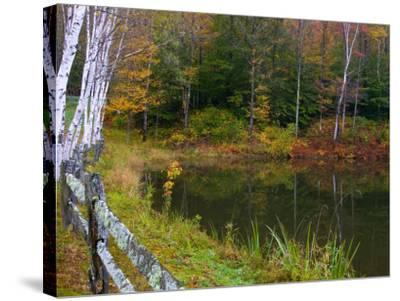 Fall Colors in the Galton Pond, Gralton, Vermont, USA-Joe Restuccia III-Stretched Canvas Print