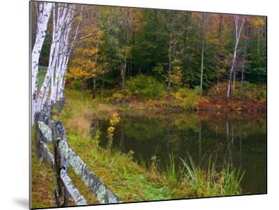 Fall Colors in the Galton Pond, Gralton, Vermont, USA-Joe Restuccia III-Mounted Photographic Print