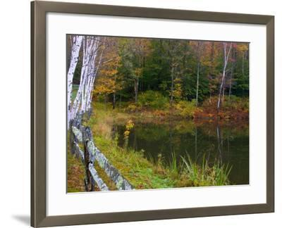 Fall Colors in the Galton Pond, Gralton, Vermont, USA-Joe Restuccia III-Framed Photographic Print
