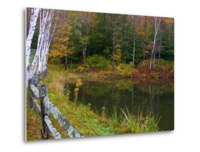 Fall Colors in the Galton Pond, Gralton, Vermont, USA-Joe Restuccia III-Metal Print