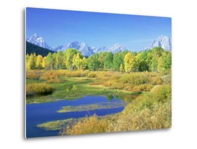 Teton Range, Grand Teton National Park, USA-Stan Osolinski-Metal Print