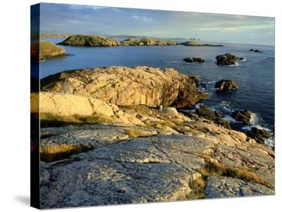 Coast at Sheigra in Evening Light, Scotland-Iain Sarjeant-Stretched Canvas Print