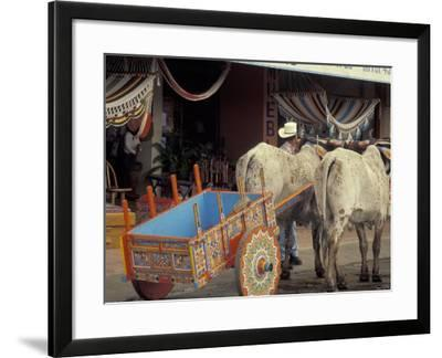 Ox Cart in Artesan Town of Sarchi, Costa Rica-Stuart Westmoreland-Framed Photographic Print