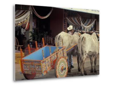 Ox Cart in Artesan Town of Sarchi, Costa Rica-Stuart Westmoreland-Metal Print