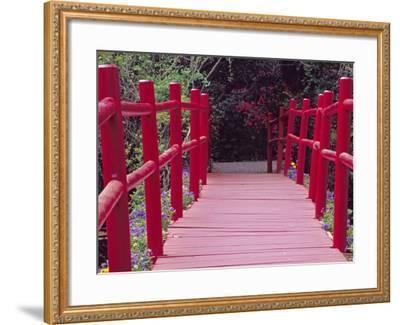 Red Bridge, Magnolia Plantation and Gardens, Charleston, South Carolina, USA-Julie Eggers-Framed Photographic Print