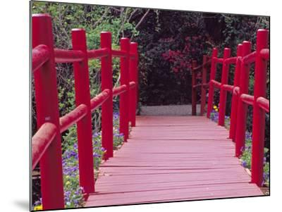 Red Bridge, Magnolia Plantation and Gardens, Charleston, South Carolina, USA-Julie Eggers-Mounted Photographic Print