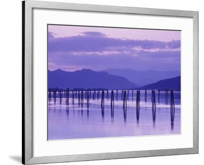 Pilings Reflecting in Calm Water, Pend Oreille River, Washington, USA-Jamie & Judy Wild-Framed Photographic Print