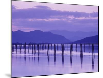 Pilings Reflecting in Calm Water, Pend Oreille River, Washington, USA-Jamie & Judy Wild-Mounted Photographic Print