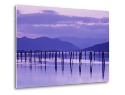 Pilings Reflecting in Calm Water, Pend Oreille River, Washington, USA-Jamie & Judy Wild-Metal Print