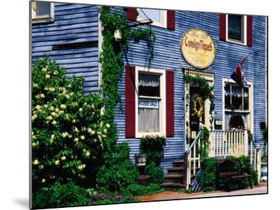 Antique Store in Downtown, St. Charles, United States of America-Richard Cummins-Mounted Photographic Print