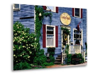 Antique Store in Downtown, St. Charles, United States of America-Richard Cummins-Metal Print