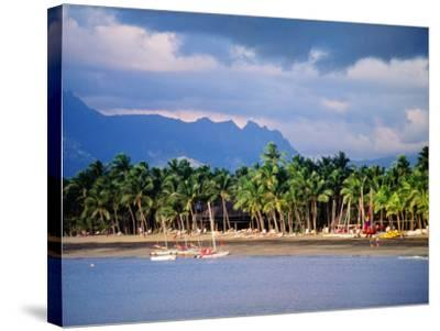 Palms and Beach, Sheraton Royale Hotel, Fiji-Peter Hendrie-Stretched Canvas Print