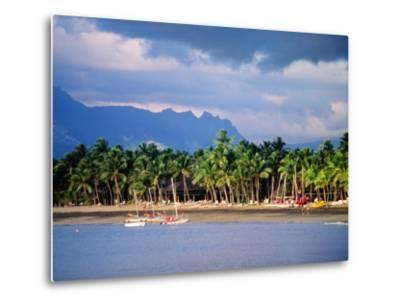 Palms and Beach, Sheraton Royale Hotel, Fiji-Peter Hendrie-Metal Print