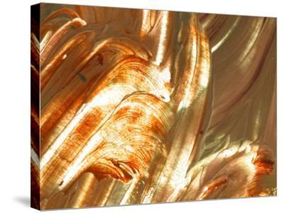 Close-up of Bright Colorful Paint Smears--Stretched Canvas Print