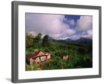 Overhead of House in Rainforest, Roseau Valley, Dominica-Michael Lawrence-Framed Photographic Print
