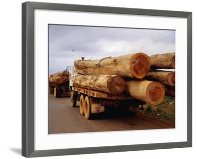 Logging Trucks on Road, Bolaven Plateau, Laos-Woods Wheatcroft-Framed Photographic Print