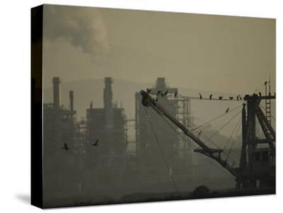 Birds Roost on the Riggings of a Crane Near Belching Smokestacks-Joel Sartore-Stretched Canvas Print